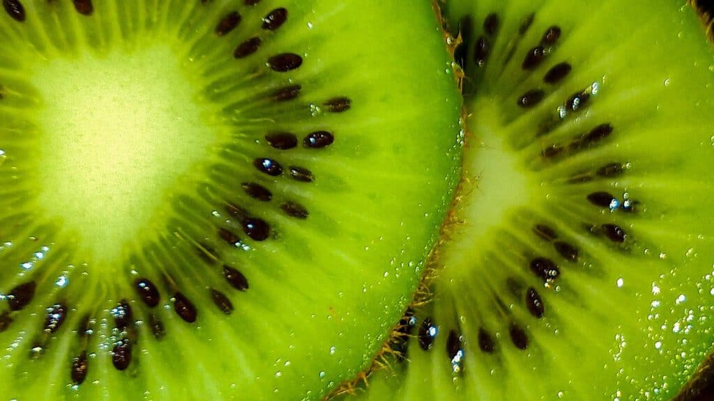 kiwi yogurt smoothie recipe
