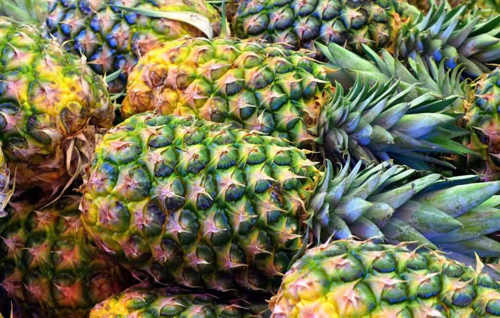 selecting the right pineapple