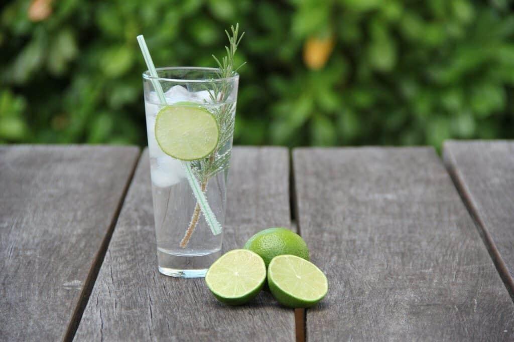 gin tonic recipe